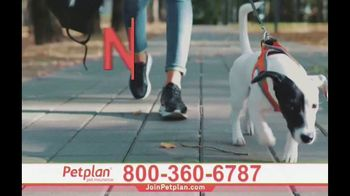 Petplan TV Spot, 'Unexpected Vet Care' - Thumbnail 8