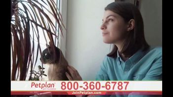 Petplan TV Spot, 'Unexpected Vet Care' - Thumbnail 9