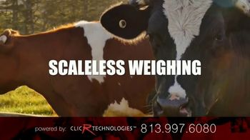 ClicR Technologies Bovine Solution TV Spot, 'Scaleless Weighing' - Thumbnail 4