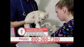Petplan TV Spot, 'Surprise Medical Expenses'