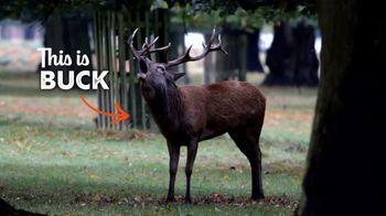 Zaxby's Zensation Fillet Sandwich Meal TV Spot, 'Buck and Back'