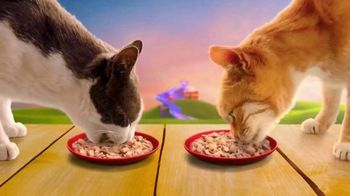 Friskies Stuf'd & Sauc'd TV Spot, 'Ramping Up'