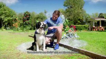 Claritin Chewables TV Spot, 'Feel the Clarity: Dog Walk'