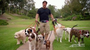 Mercury Insurance TV Spot, 'Dog Walker'