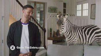 The Zebra TV Spot, 'Easy' - Thumbnail 9