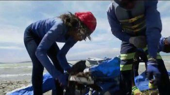 4ocean TV Spot, 'Eight Million Tons of Plastic' - Thumbnail 3