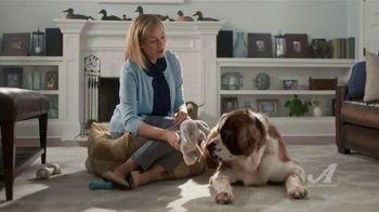 Auto-Owners Insurance TV Spot, 'Simple Human Sense: Guard Dog' - Thumbnail 9