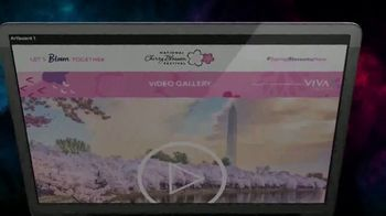 VIVA Creative TV Spot, '2020 National Cherry Blossom Festival: The Online Festival Experience' - Thumbnail 2