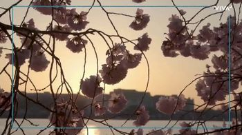 VIVA Creative TV Spot, '2020 National Cherry Blossom Festival: The Online Festival Experience' - Thumbnail 5