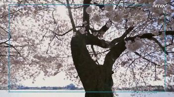 VIVA Creative TV Spot, '2020 National Cherry Blossom Festival: The Online Festival Experience' - Thumbnail 6