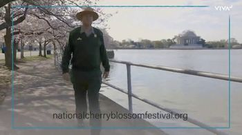 VIVA Creative TV Spot, '2020 National Cherry Blossom Festival: The Online Festival Experience' - Thumbnail 7
