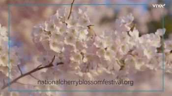 VIVA Creative TV Spot, '2020 National Cherry Blossom Festival: The Online Festival Experience' - Thumbnail 8