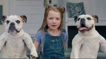 Lance Toasty Real Peanut Butter Crackers TV Spot, 'Dog Sandwich: Toast Chee' - Thumbnail 4