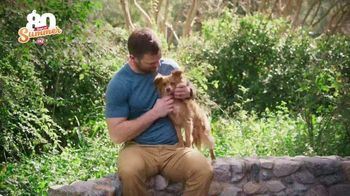 Dairy Queen TV Spot, 'Animal Planet: 80 Days of Summer' Featuring Dave Salmoni - Thumbnail 2