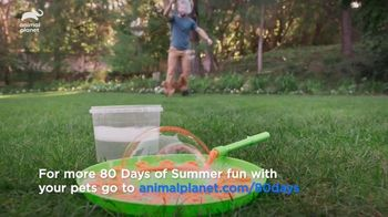 Dairy Queen TV Spot, 'Animal Planet: 80 Days of Summer' Featuring Dave Salmoni - Thumbnail 6