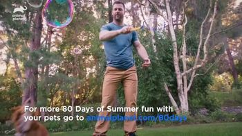 Dairy Queen TV Spot, 'Animal Planet: 80 Days of Summer' Featuring Dave Salmoni - Thumbnail 7