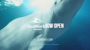 SeaWorld Orlando TV Spot, 'Welcome Back: Safe Healthy Fun' - Thumbnail 10