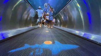 SeaWorld Orlando TV Spot, 'Welcome Back: Safe Healthy Fun' - Thumbnail 7