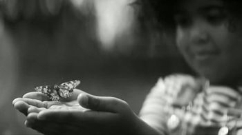 Chevron TV Spot, 'Butterfly'