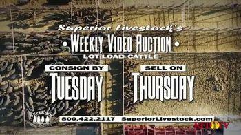 Superior Livestock Auction TV Spot, 'Take Control'