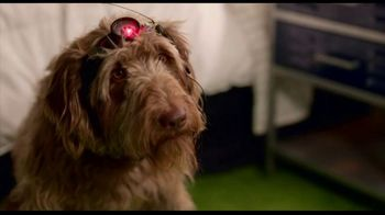 DIRECTV Cinema TV Spot, 'Think Like a Dog' - Thumbnail 1