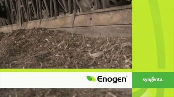 Syngenta Enogen TV Spot, 'Kristi Keilen' - Thumbnail 9