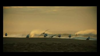 Michelob ULTRA Pure Gold TV Spot, 'Surf' Song by Darondo - Thumbnail 6