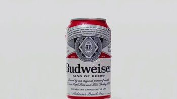 Budweiser TV Spot, 'Summer Patriotic Cans'