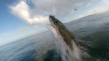 FOX Nation TV Spot, 'Summer of the Shark' - Thumbnail 4