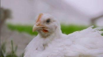 Perdue Farms Harvestland TV Spot, 'A Walk Outside' - Thumbnail 4