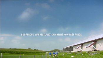 Perdue Farms Harvestland TV Spot, 'A Walk Outside' Song by The Brady Bunch - Thumbnail 9