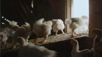 Perdue Farms Harvestland TV Spot, 'A Walk Outside' Song by The Brady Bunch - Thumbnail 2