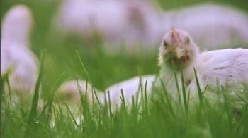 Perdue Farms Harvestland TV Spot, 'A Walk Outside' Song by The Brady Bunch - Thumbnail 6