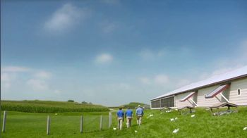 Perdue Farms Harvestland TV Spot, 'A Walk Outside' Song by The Brady Bunch - Thumbnail 7