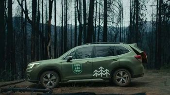 Subaru TV Spot, 'The Subaru Forester Re-Foresting Project' [T1] - Thumbnail 8