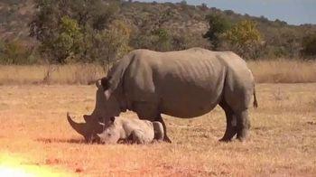 Horn's Africa Safaris TV Spot, 'Dream Hunt' - Thumbnail 2