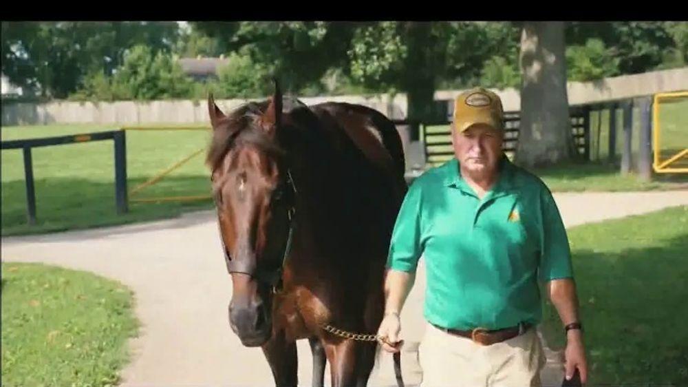 Claiborne Farm TV Commercial, 'Reputation of Excellence'