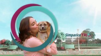 Simparica Trio TV Spot, 'Simplifies Protection' - Thumbnail 10