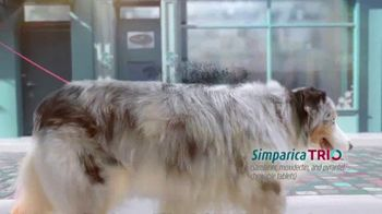 Simparica Trio TV Spot, 'Simplifies Protection' - Thumbnail 2