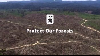 World Wildlife Fund TV Spot, 'Protect our Forests' - Thumbnail 5