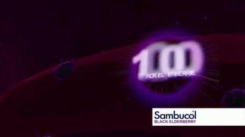 Sambucol Black Elderberry TV Spot, 'For the Whole Family' - Thumbnail 4