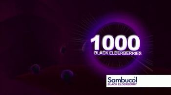Sambucol Black Elderberry TV Spot, 'For the Whole Family' - Thumbnail 5