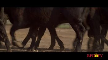 Merck Animal Health Zuprevo TV Spot, 'Victory' - Thumbnail 6