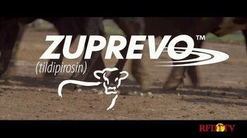 Merck Animal Health Zuprevo TV Spot, 'Victory' - Thumbnail 9