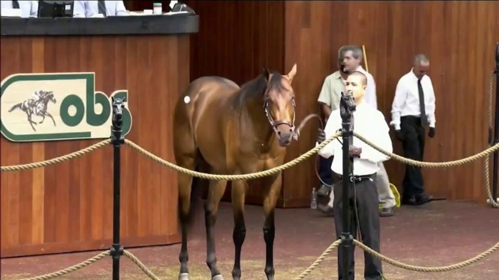 Claiborne Farm TV Commercial, 'Run Happy: Maiden Special Weight Win'