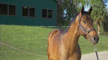 Claiborne Farm TV Spot, 'Run Happy: Maiden Special Weight Win' - Thumbnail 7