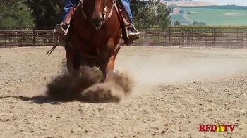Silver Lining Herbs TV Spot, 'What Makes a Horseman'