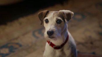 Stouffer's Single Serve Macaroni & Cheese TV Spot, 'Too Bad You're a Dog' - Thumbnail 9
