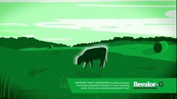 Merck Animal Health Revalor-G TV Spot, 'Right Time'