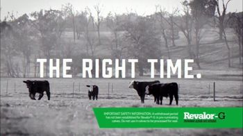 Merck Animal Health Revalor-G TV Spot, 'Right Time' - Thumbnail 4